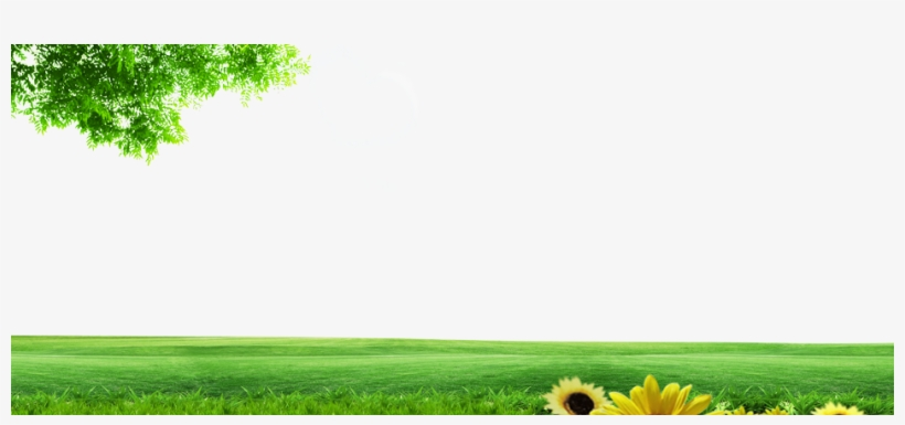 Background Images Of Nature Png - Natural Background Images Png PNG Images | PNG Cliparts Free ...