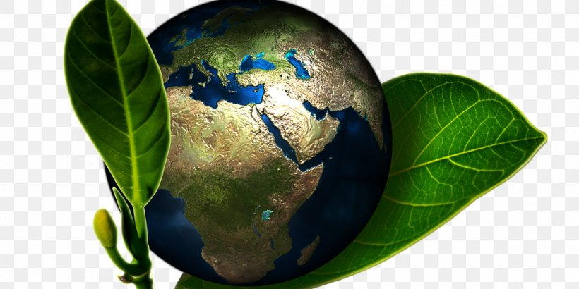 Chopped Celebrity Chefs Png - Natural Environment World Environment Day Steaks, Chops And Fancy ...