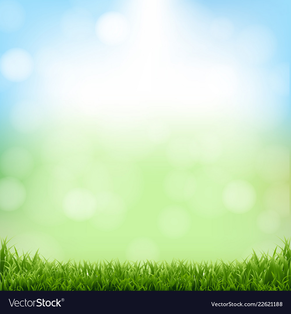 Nature Background - Nature green background with bokeh and grass Vector Image
