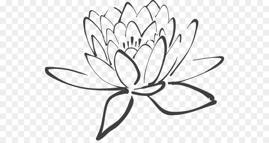 Lotus Flower Png Black And White Free Lotus Flower Black And White