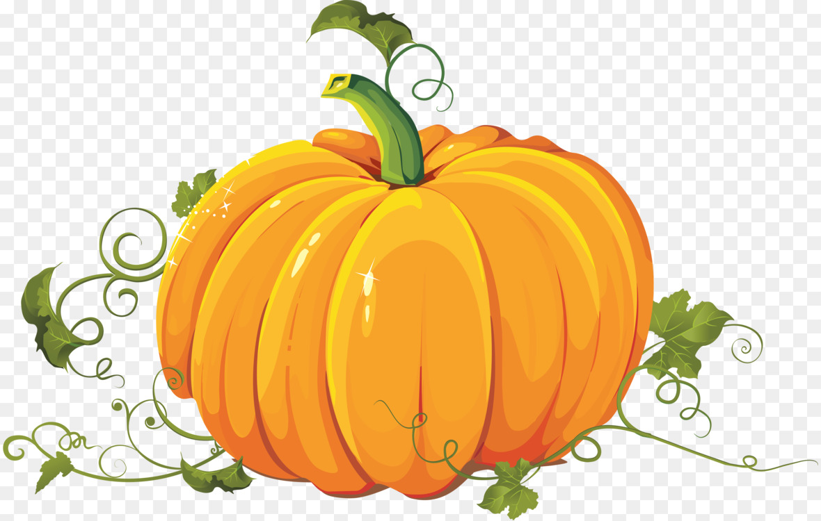 Pumpkin Free Png - New Hampshire Pumpkin Festival Calabaza Giant pumpkin Field ...