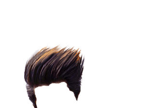 Hair Png & Free Hair png Transparent Images #49 - PNGio