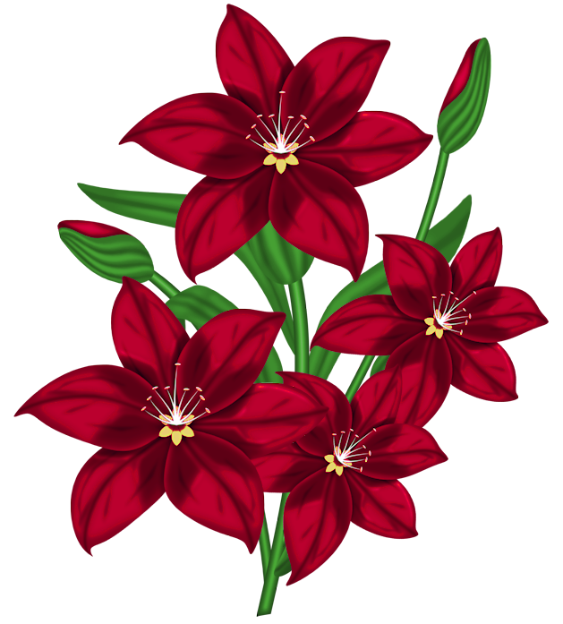 Flower Clipart Png - Nice Red PNG Flower Clipart | Gallery Yopriceville - High-Quality ...