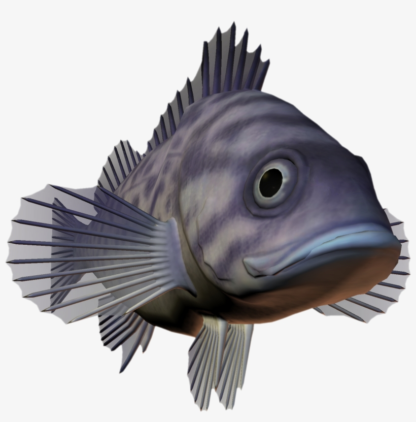Deep Sea Fish Png - Ocean Fish Png Download - Deep Sea Creatures Png Transparent PNG ...