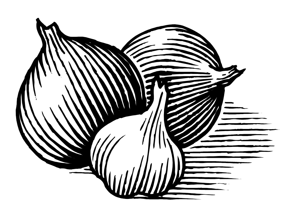 Onion Png Black And White & Free Onion Black And White.png ...