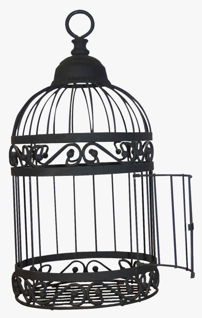 Cage Png Black And White & Free Cage Black And White.png ...