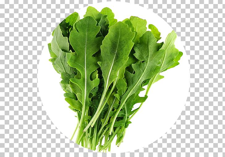 Eruca Png - Organic Food Eruca Sativa Vegetable Arugula Perennial Wall-rocket ...