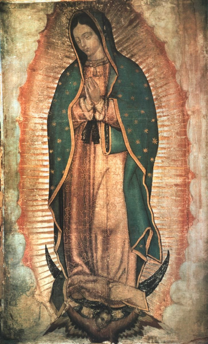 Image result for our lady guadalupe