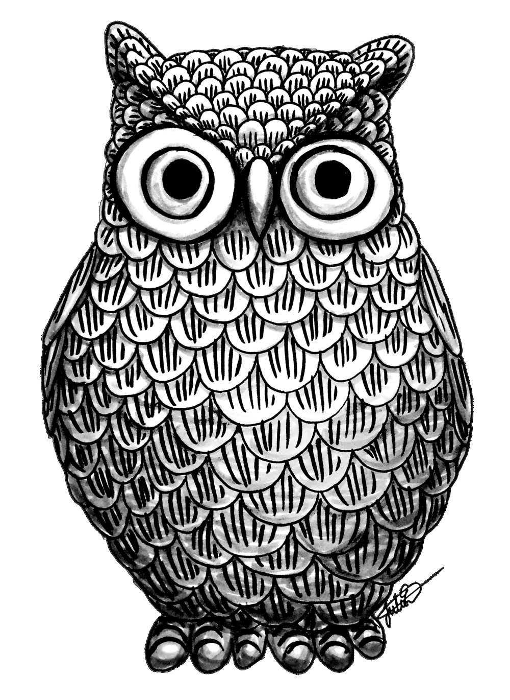 Cute Owl Drawings Png Free Cute Owl Drawings Png Transparent Images 144517 Pngio