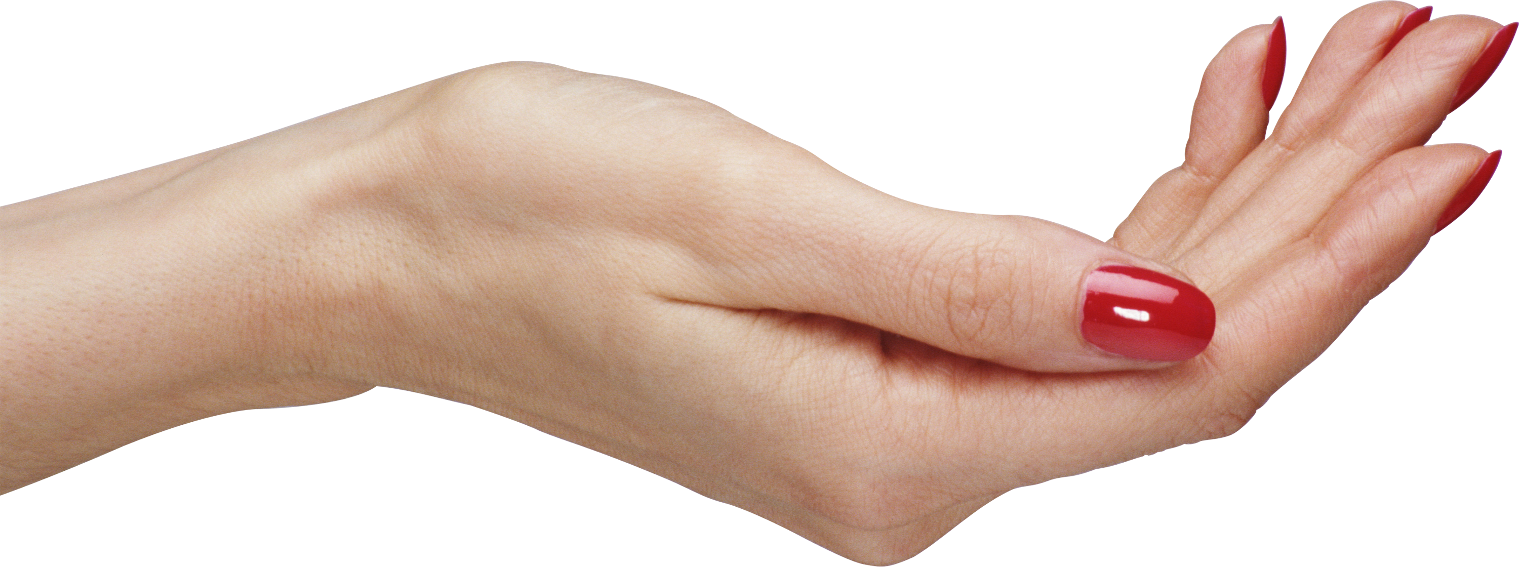 Hands Png - Palm hands PNG, hand image free