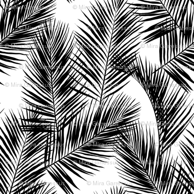 Palm Leaves Black On White Small Sil 136290 Png