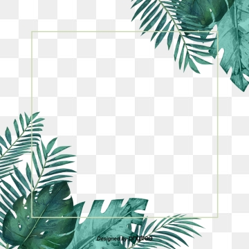 Palm Leaves Png Images Vector And Psd 1147414 Png Images Pngio Calendar, frames and photo frames, invitation png and psd formats | download. palm leaves png images vector and psd