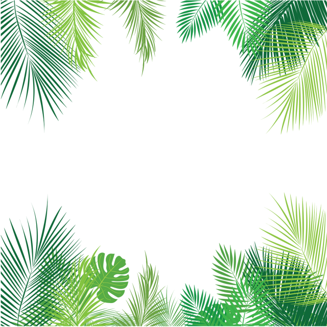 Tropical Leaves Png - Palm Leaves Png, Vector, PSD, and Clipart With Transparent ...