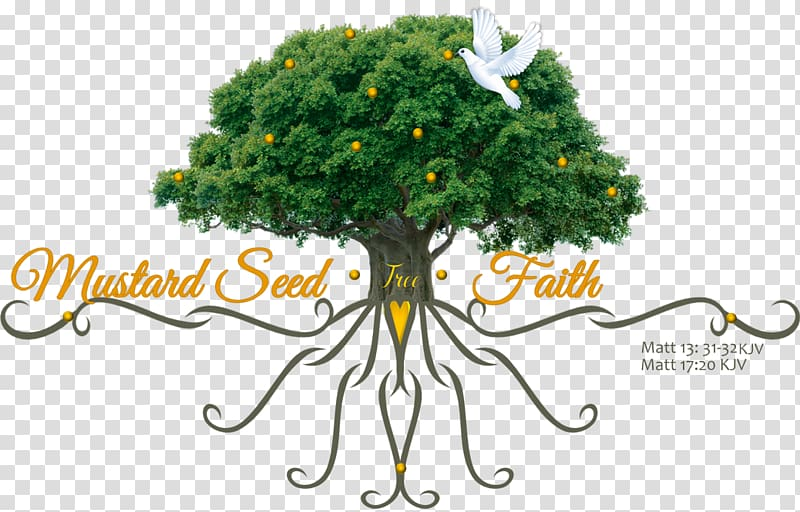 Mustard Seed Parable Png - Parable of the Mustard Seed Mustard plant, others transparent ...
