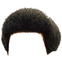 Afro Hair Png Amp Free Afro Hair Png Transparent Images