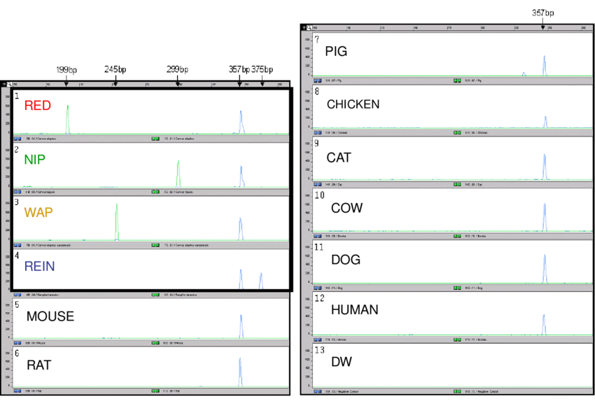Red Number 2 And Cow Png - PCR products of species-specific mitochondrial D-loops and ...