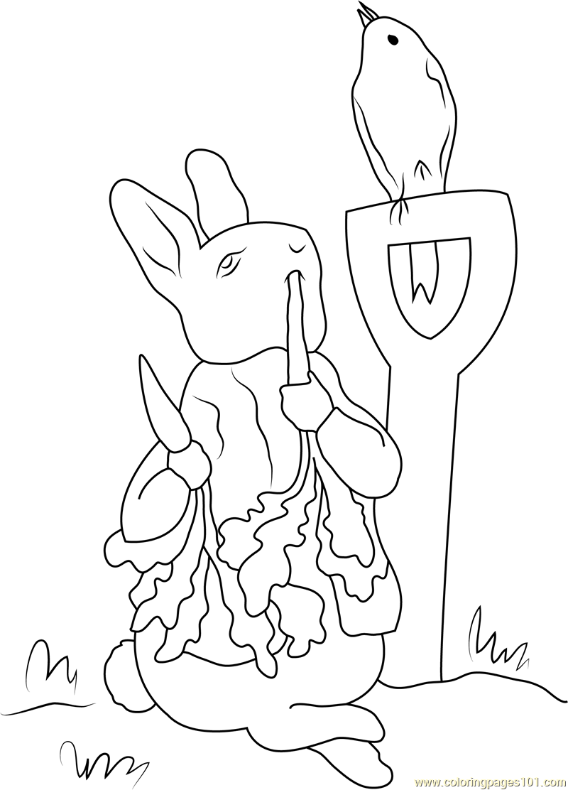 Peter Rabbit Coloring Pages 2883243 Png Images Pngio