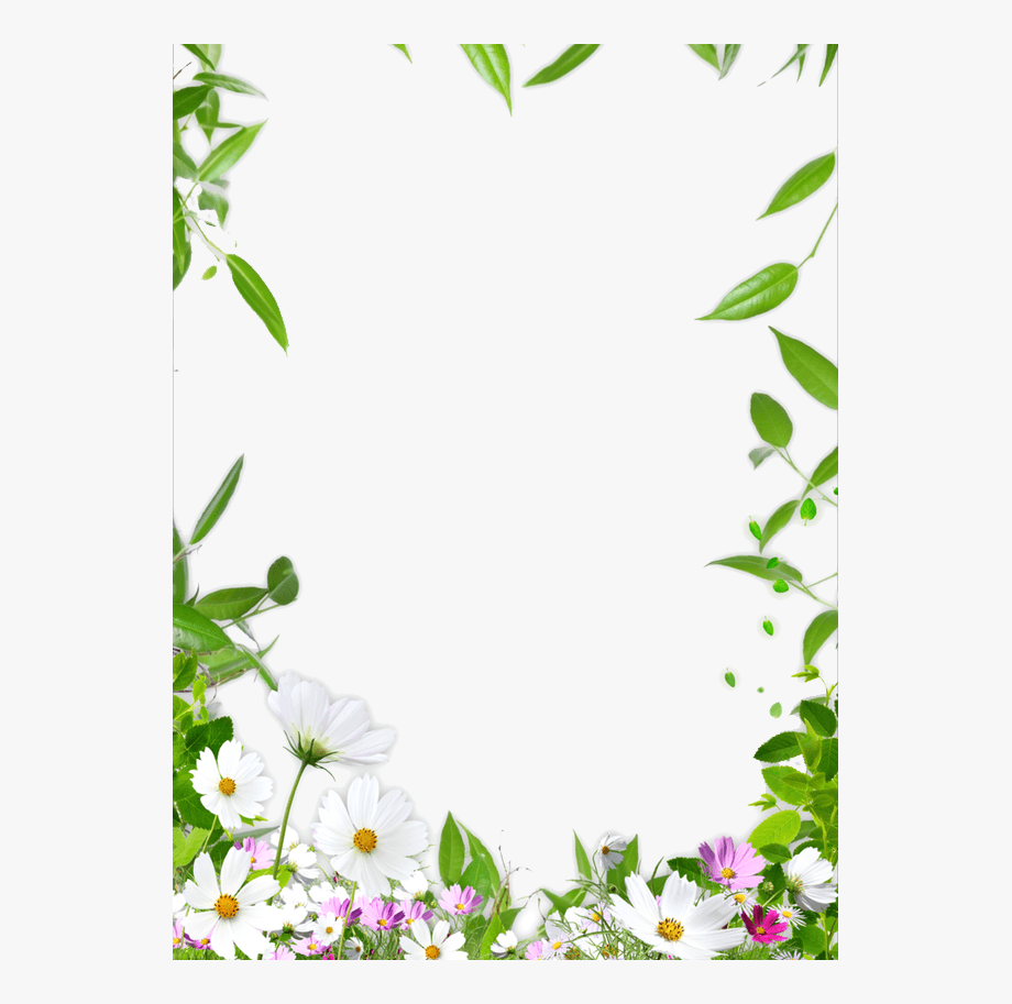 Picture Ceiling Flower Frame Border Draw 1152486 Png Images Pngio