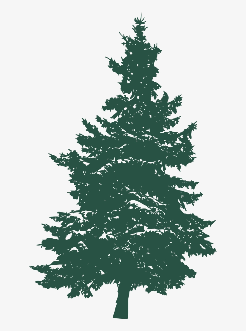 Transparent Pine Tree - Pine Tree Silhouette 3 1 - Pine Tree Silhouette On White - Free ...