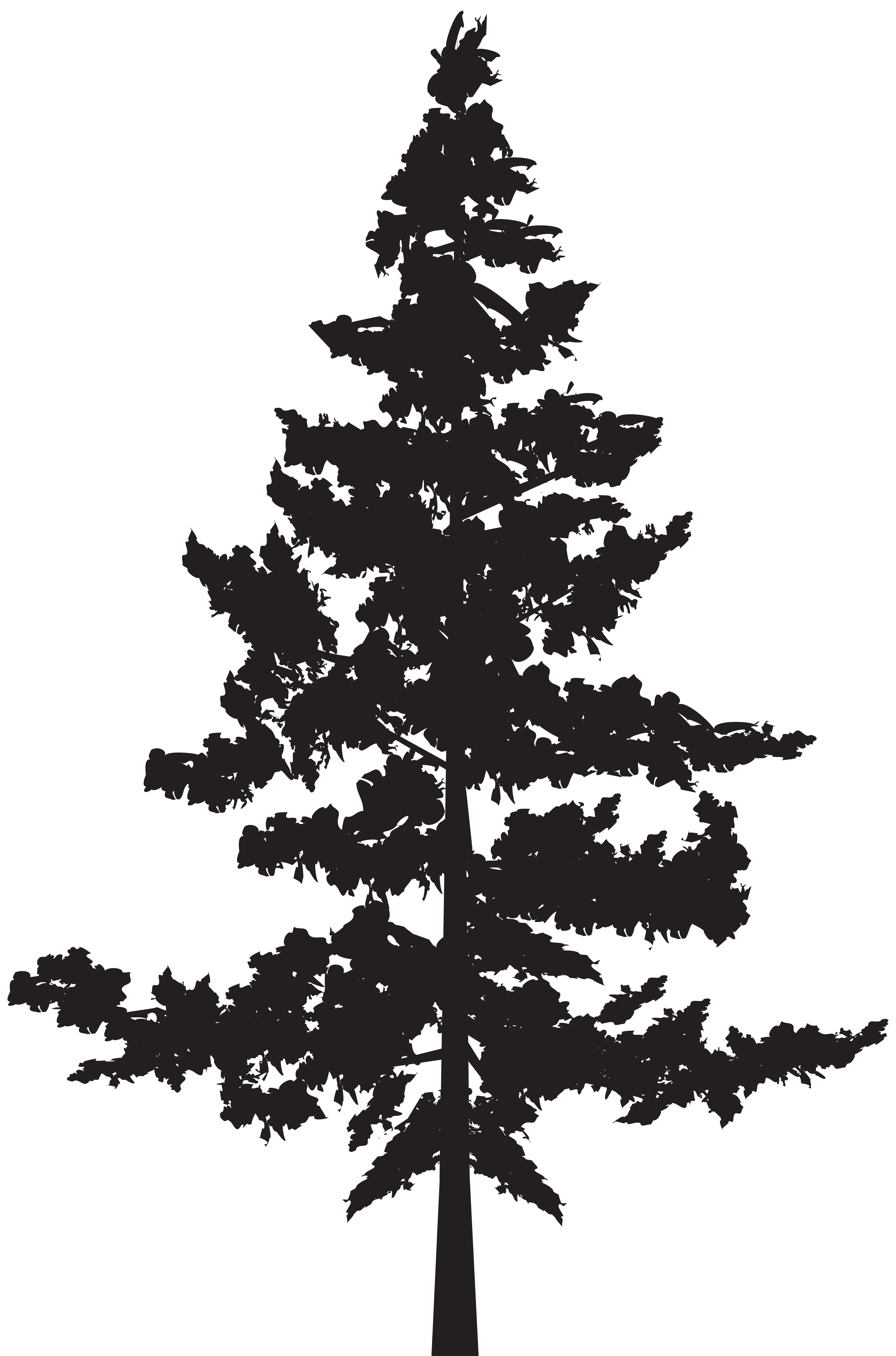 Black And White Tree Silhouette Png & Free Black And White ...