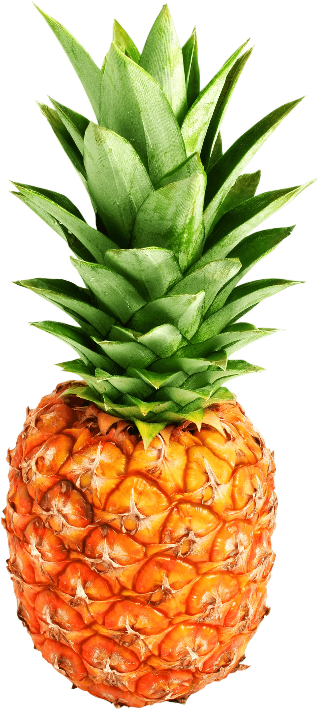Cool Pineapple Png - Pineapple PNG Transparent Photo