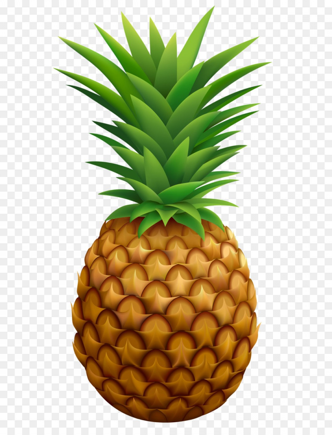 Cartoon Pineapple Png Free Cartoon Pineapple Png Transparent Images 29289 Pngio