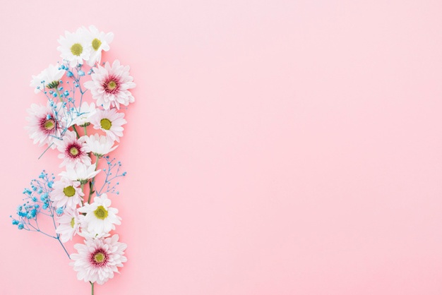 Pink Background Vectors, Photos And PSD #673773 - PNG Images