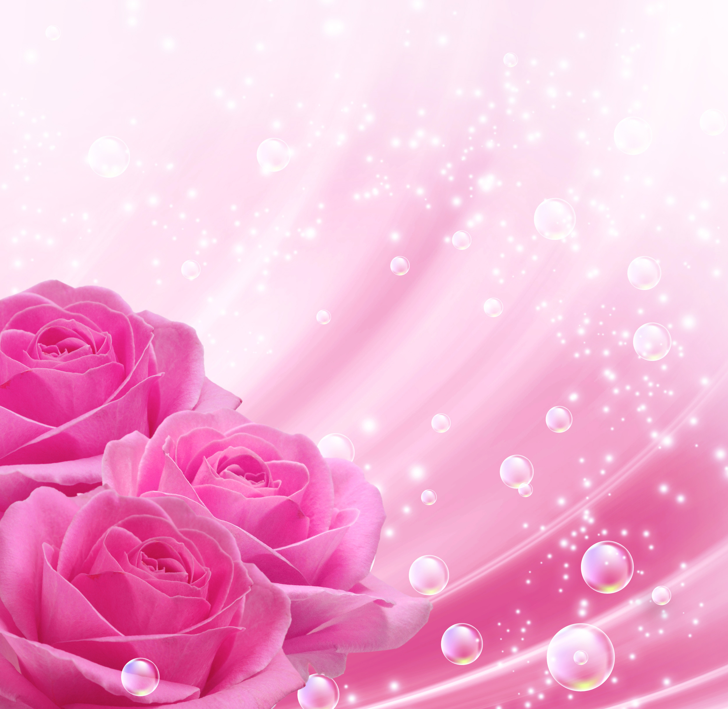 Background Pink Png - Pink Background with Pink Roses​ | Gallery Yopriceville - High ...