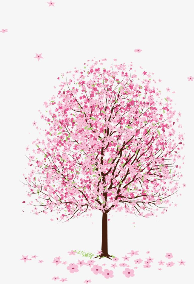 Flowering Peach Trees Png - Pink Peach Blossom Peach Tree, Peach Clipart, Tree Clipart, Pink ...