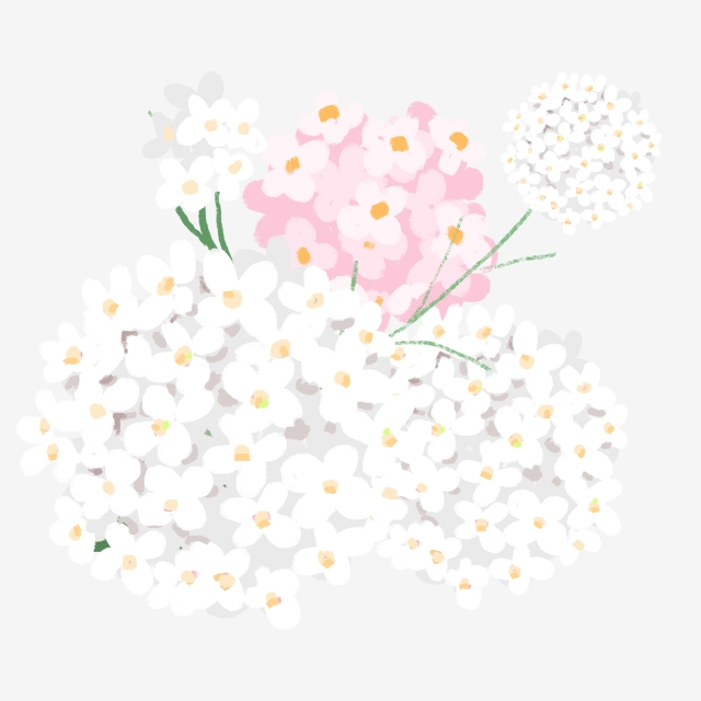 Png Tree With White And Pink Flowers - Plant Flower Beautiful Flower Pink Flower Flower,beautiful,hundred ...