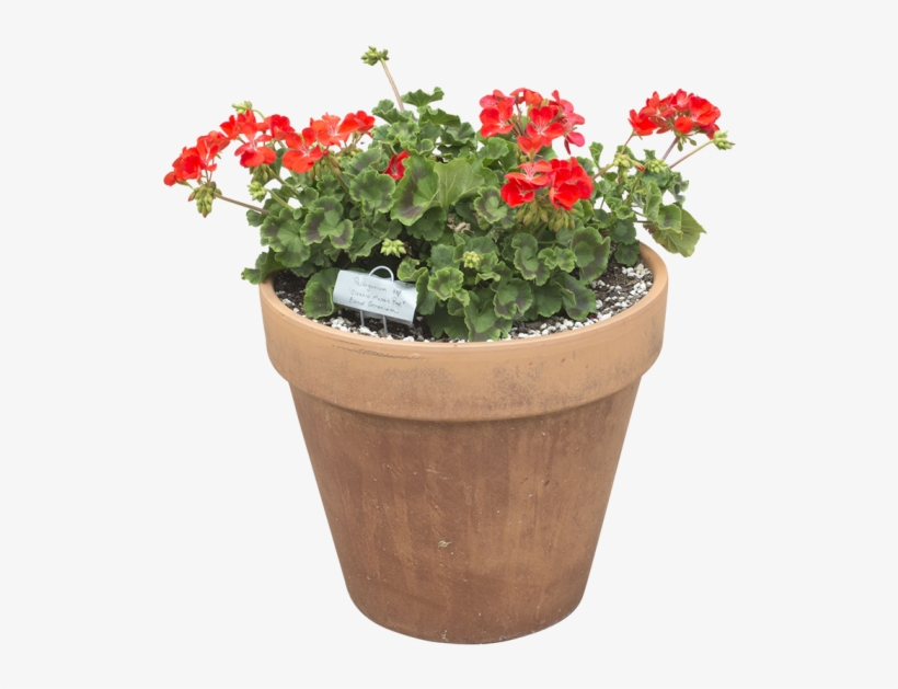 Window Box Png - Planting A Window Box Planter Southern Patio - Flowerpot ...