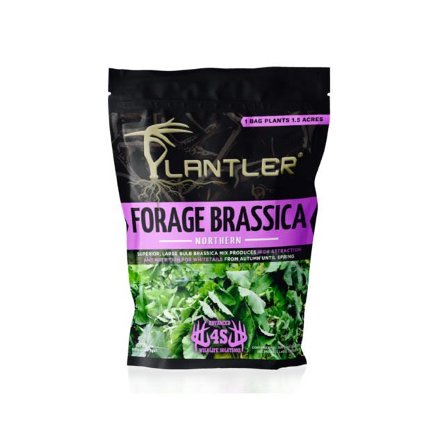 Forage Png - Plantler Forage Brassica – 4S Advanced Wildlife Solutions