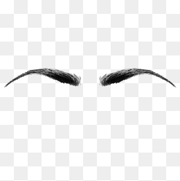 Eyebrow Logo Png - PNG Eyebrows Transparent Eyebrows.PNG Images. | PlusPNG