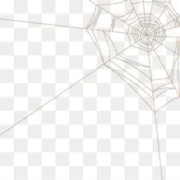 Spider Web Png Free Spider Web Png Transparent Images 2911 Pngio This free icons png design of realistic spider web png icons has been published by iconspng.com. spider web png transparent images 2911