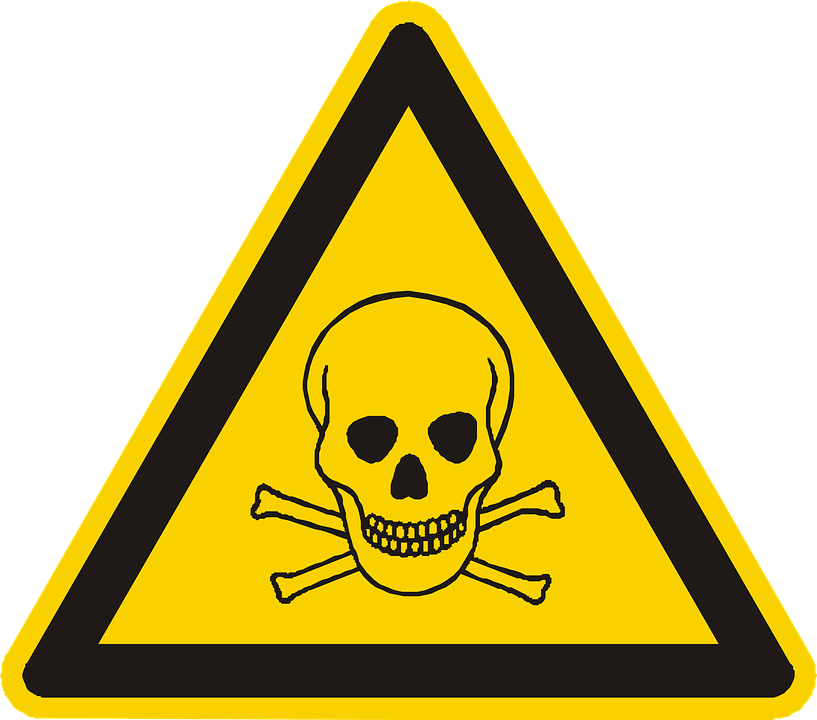 Poison Vector Png - Poison Skull And Crossbones - Free vector graphic on Pixabay