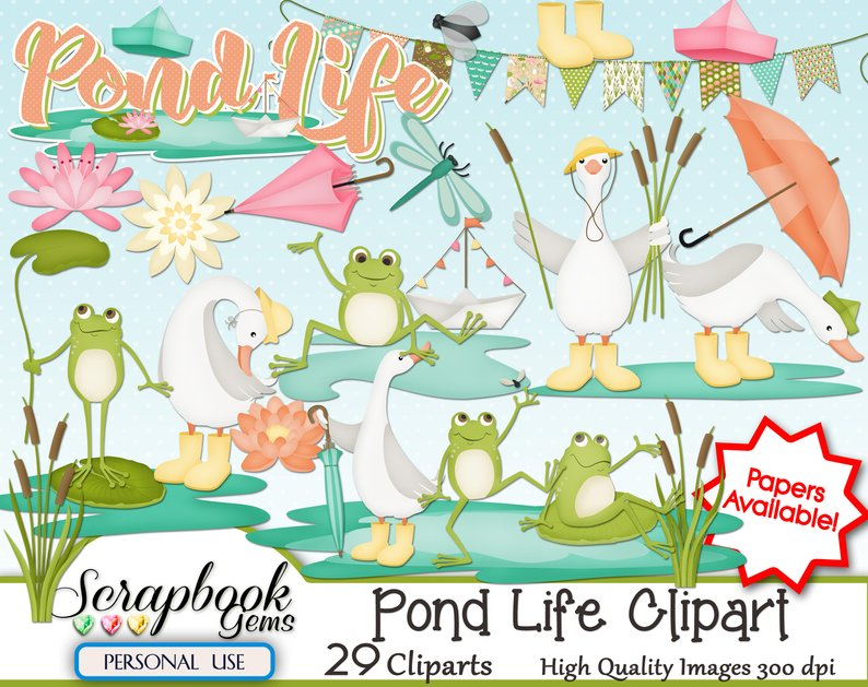Pond Life Png - POND LIFE Clipart 29 png Clipart files Instant Download lake | PNGio