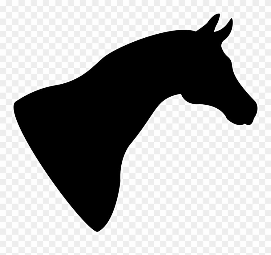 Pony Silhouette Png - Pony Arabian Horse Horse Head Mask Animal Silhouettes - Horse Head ...