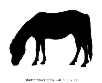 Pony Silhouette Png - Pony Silhouette Images, Stock Photos & Vectors | Shutterstock