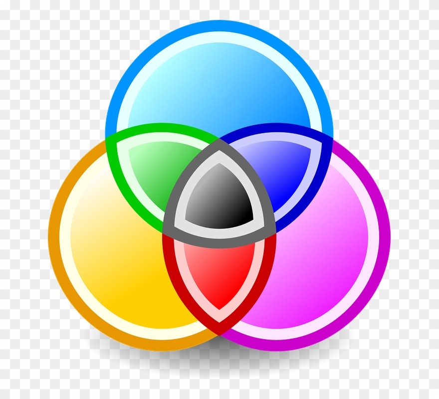 Color Preferences Png - Preferences, Qualifications, And Opportunities - Color Circles Png ...