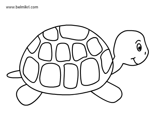 Coloring Pictures Png - Printable Coloring Pages, Dot The Dot #1822033 - PNG Images - PNGio