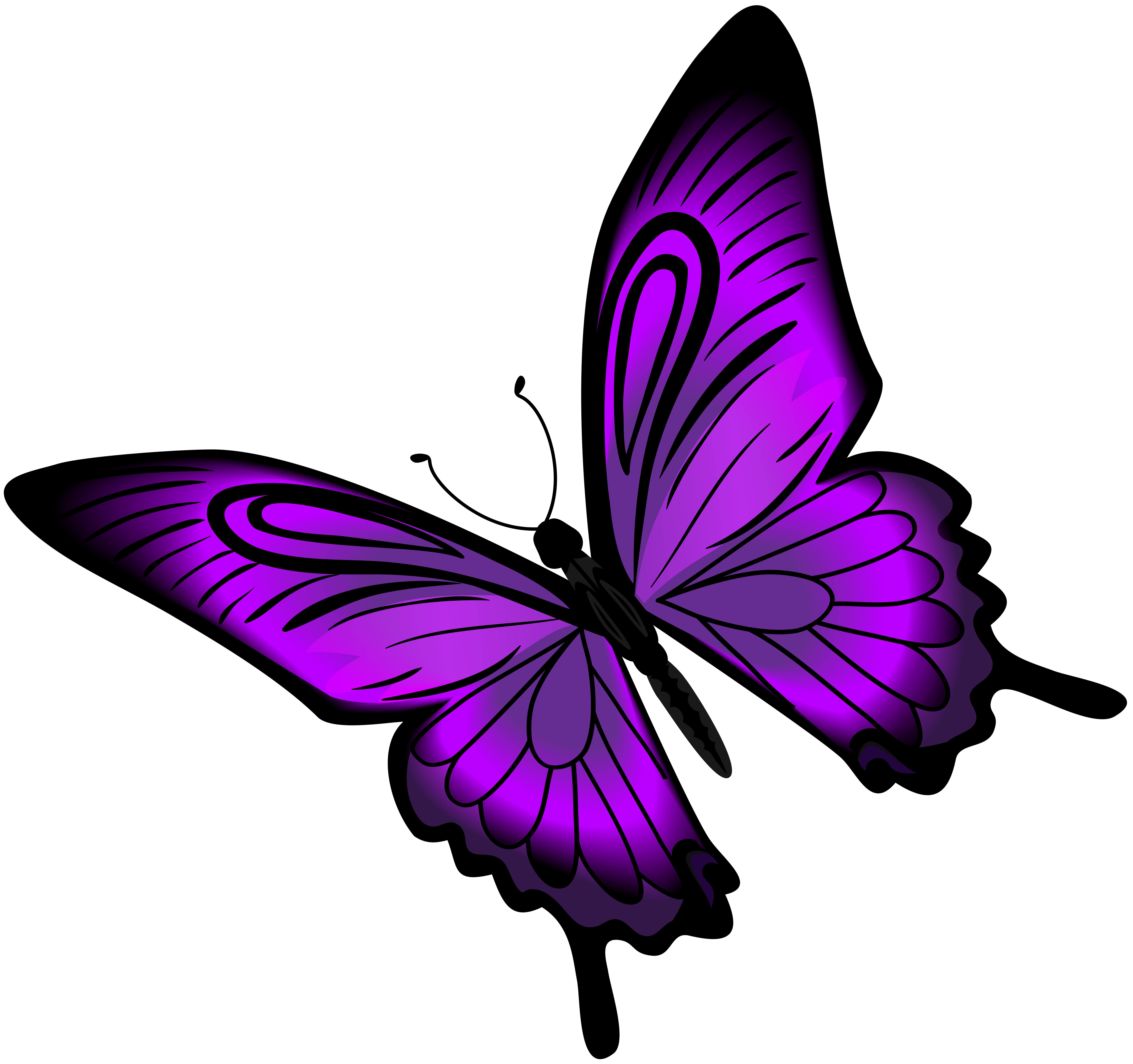 Purple Butterfly Png & Free Purple Butterfly png Transparent Images