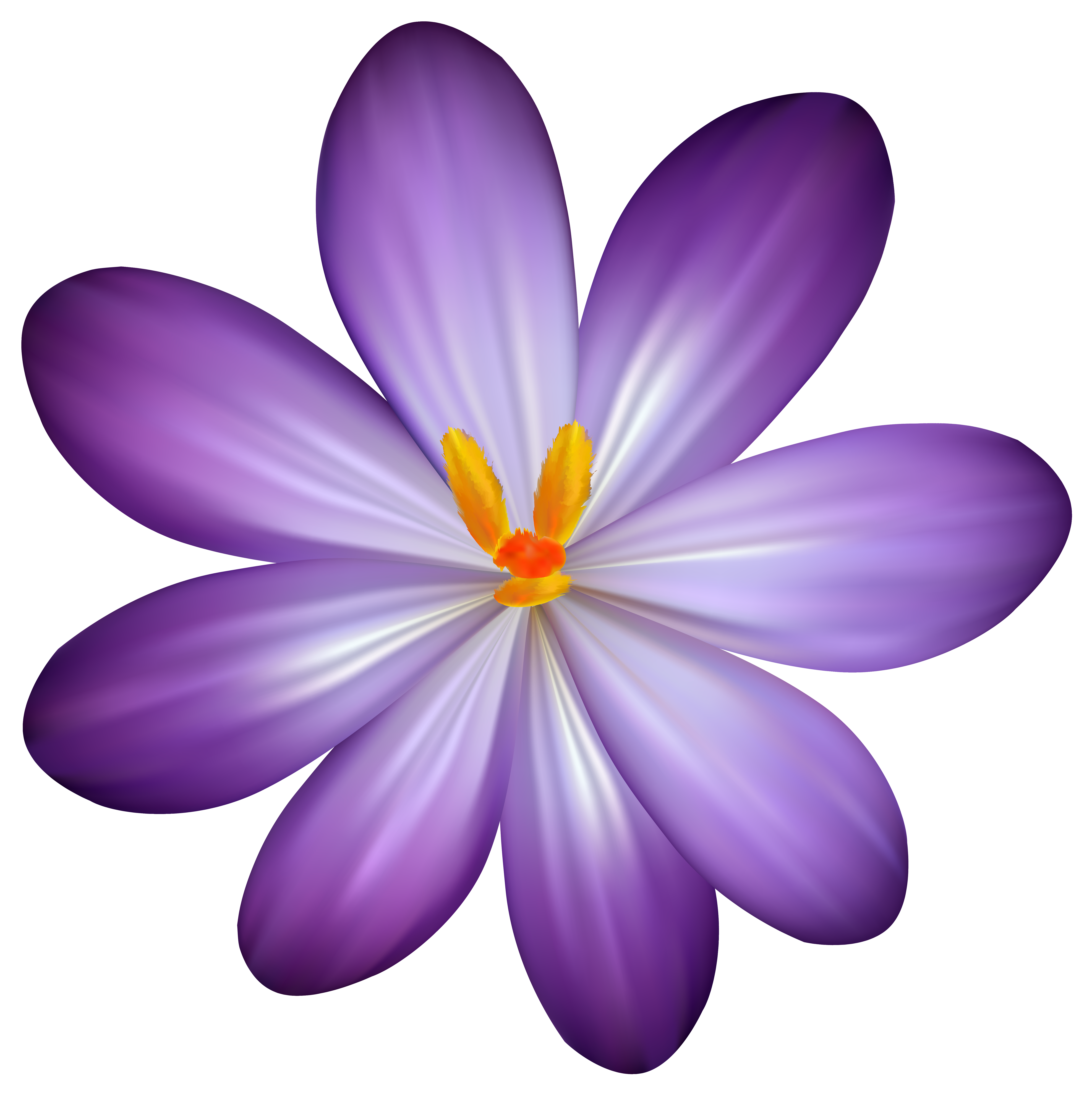 Flower Clipart Png - Purple Crocus Flower PNG Clipart Image   Gallery Yopriceville ...