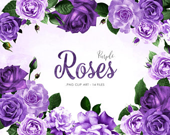 Violet Rose Png - Purple flowers png | PNGio