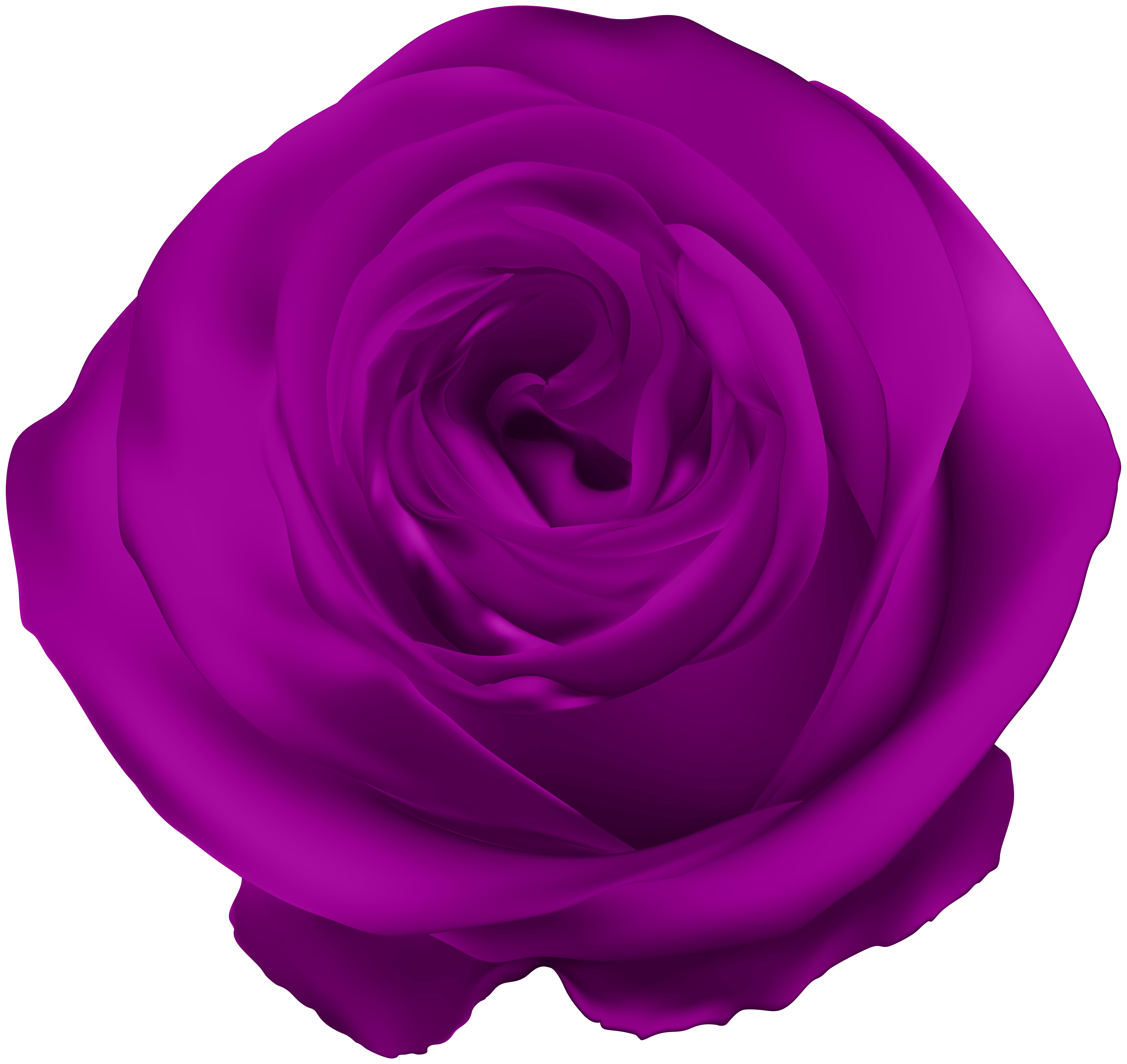 Violet Rose Png - Purple Rose PNG Clip Art | Gallery Yopriceville - High-Quality ...