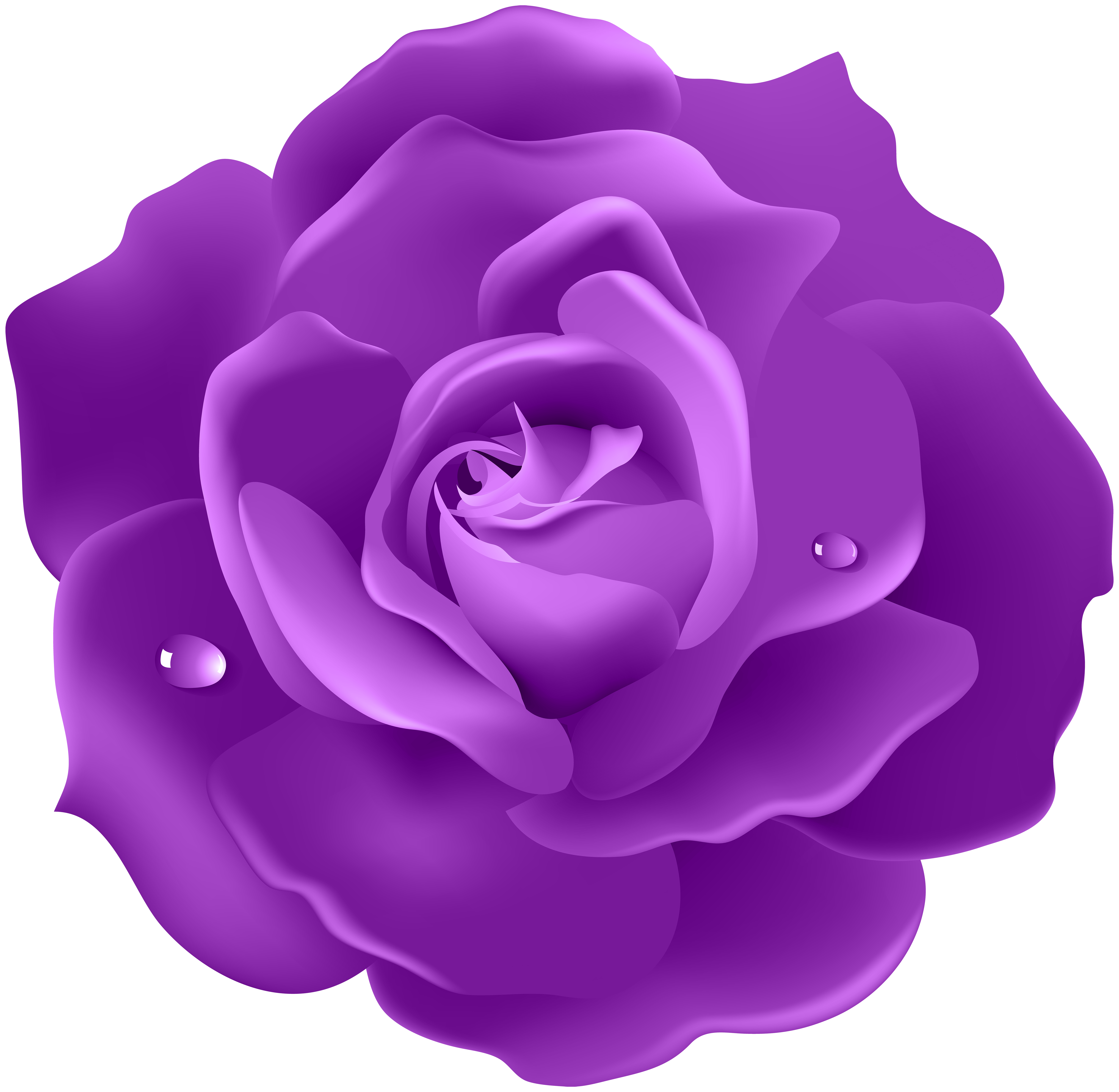 Violet Rose Png - Purple Rose PNG Image   Gallery Yopriceville - High-Quality ...