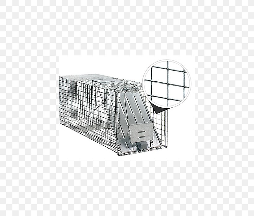 Nuisance Wildlife Management Png - Raccoon Trapping Nuisance Wildlife Management Pest Control Cage ...