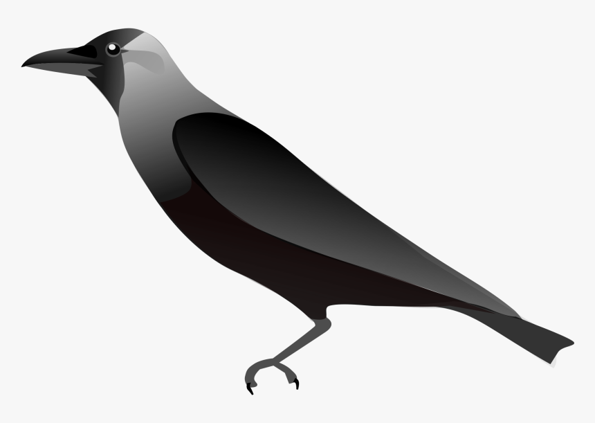 Crow Outline Png - Raven Png - Outline Pic Of Crow, Transparent Png , Transparent Png ...
