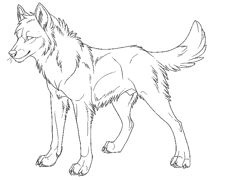 Wolf Coloring Pages For Adults Png - Real Wolf Coloring Pages #1555126 - PNG Images - PNGio