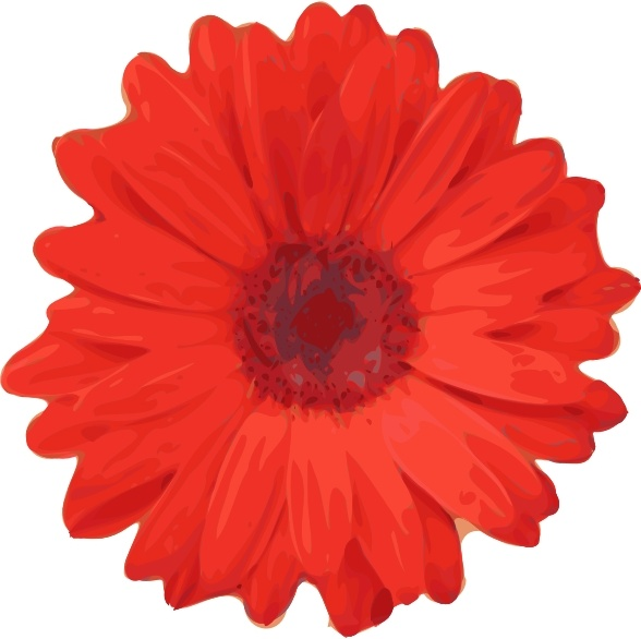 Red Flower Drawing - Red Flower Pedals clip art Free vector in Open office drawing svg ...