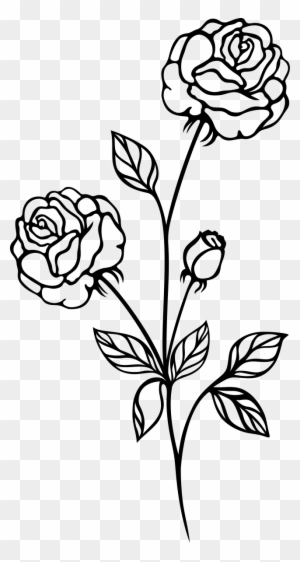 Rose Plant Png Black And White Transparent Images 3916 Pngio